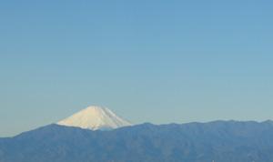 1月4日(金)朝、インフォマティクス本社オフィスから撮影した富士山