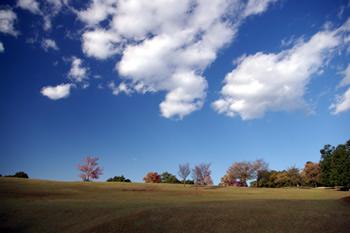 奈良公園(奈良県奈良市)
