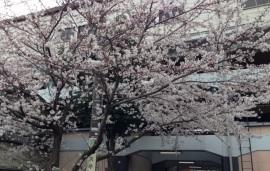 京王多摩川駅前