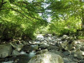 山梨県道志村 三ツ瀬川