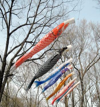 那須・余笹川の鯉のぼり